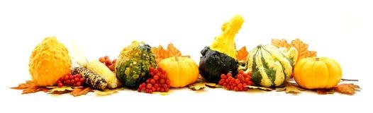 De grens van de herfst royalty-vrije stock foto's