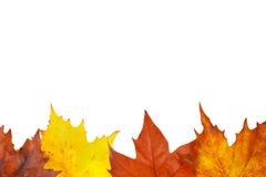 De grens van de herfst Royalty-vrije Stock Afbeeldingen
