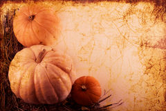 De grens van de herfst royalty-vrije stock afbeelding