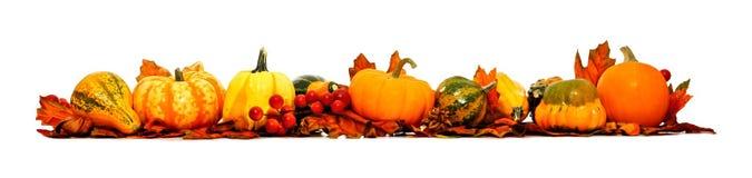De Grens van de herfst Blauwe hemel Stock Fotografie