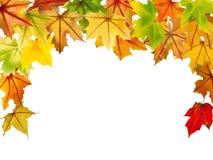 De Grens van de herfst Blauwe hemel Stock Foto's
