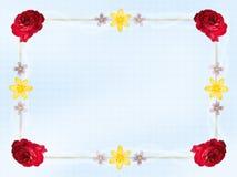 De Grens van de Kaart van de bloem Stock Foto