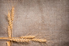 De grens van de Oren van de tarwe op de achtergrond van de Jute Royalty-vrije Stock Fotografie