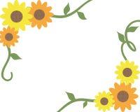 De Grens van de zonnebloem Royalty-vrije Stock Foto