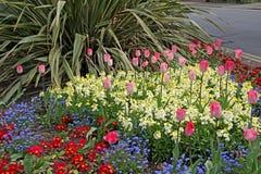 De grens van het bloembed Stock Afbeelding