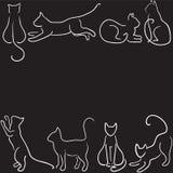 De grens van het kattensilhouet Royalty-vrije Stock Foto's