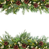 De Grens van het Kerstmisgroen Stock Foto