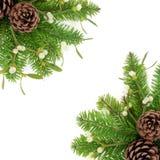 De Grens van het de wintergroen Royalty-vrije Stock Afbeelding