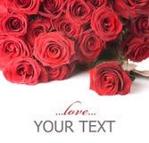 De grens van rozen Stock Foto's