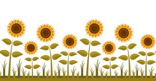 De grens van zonnebloemen stock illustratie
