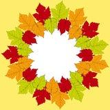 De grensachtergrond van het de herfstblad Stock Afbeelding