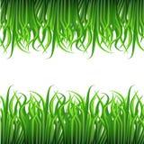 De Grenspatroon van het grasblad Royalty-vrije Stock Afbeelding