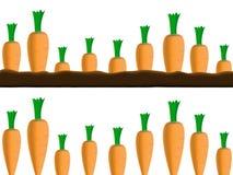 De grenzen van wortelen Stock Afbeeldingen