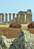 De Griekse tempel blijft in Selinunte stock afbeeldingen