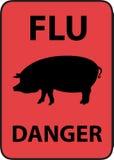 De griep van varkens Stock Foto's