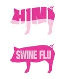 De griepH1N1 pictogrammen van varkens Stock Foto's