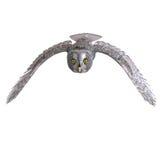 De grijze Vogel van de Uil stock illustratie