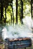 De grill van de barbecue met vlees Stock Fotografie