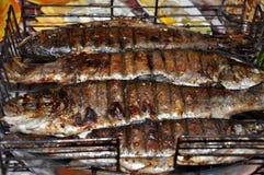 De grill van de vissenforel in openlucht Royalty-vrije Stock Foto's