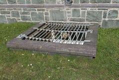 De grill van de kelderveiligheid Royalty-vrije Stock Foto