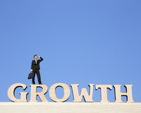 De groei bedrijfsconcept Royalty-vrije Stock Afbeelding
