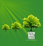 De groei in Milieu Stock Fotografie