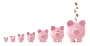 De Groei van de investering - Spaarvarkens Royalty-vrije Stock Fotografie
