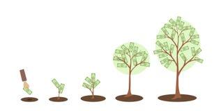 De groei van de geldboom royalty-vrije illustratie
