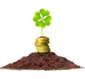 De groei van het geld. Gouden muntstukken in grond met klaverblad Stock Foto's