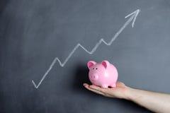 De groeigrafiek van het spaarvarken Royalty-vrije Stock Fotografie