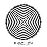 10 de groeiringen Boomringen en de boomboomstam van de zaagbesnoeiing stock illustratie