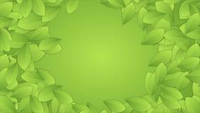 De groene abstracte ronde videoanimatie van de zomerbladeren stock videobeelden