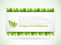 De groene achtergrond van Bladeren Stock Illustratie