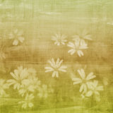 De groene achtergrond van bloemen Stock Fotografie