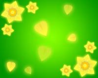 De groene achtergrond van de gele narcis Royalty-vrije Stock Afbeeldingen