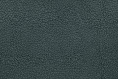 De groene achtergrond van de leertextuur Brede die Hoeklens door Lens GLB in het Midden wordt behandeld Royalty-vrije Stock Afbeelding
