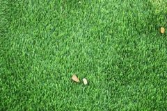 De groene achtergrond van de gazontextuur Groene grastextuur als achtergrond Hoogste mening stock afbeelding