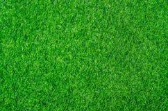 De groene achtergrond van de grastextuur stock foto's
