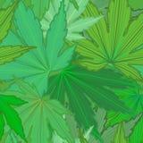 De groene Achtergrond van het Blad Royalty-vrije Stock Afbeelding