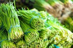 De groene achtergrond van het salade gezonde voedsel Royalty-vrije Stock Afbeelding