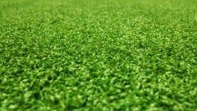 De groene achtergrond van het voetbalgebied voor het spelen van voetbal Royalty-vrije Stock Afbeelding