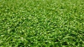 De groene achtergrond van het voetbalgebied voor het spelen van voetbal Royalty-vrije Stock Afbeeldingen