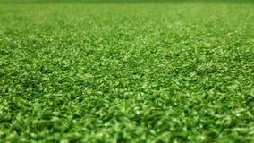 De groene achtergrond van het voetbalgebied voor het spelen van voetbal Stock Foto