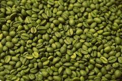 De groene achtergrond van koffiebonen Stock Afbeeldingen