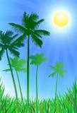 De groene achtergrond van palmen Royalty-vrije Stock Foto