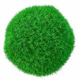De groene Bal van het Gras Geïsoleerd op wit Stock Foto