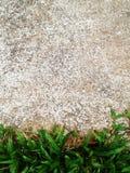 De groene Barst van de grastextuur met concrete achtergrond Royalty-vrije Stock Foto's
