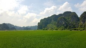 De groene Bergen van Tam Coc royalty-vrije stock afbeeldingen