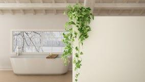 De groene binnenlandse achtergrond van het ontwerpconcept met exemplaarruimte, voorgrond witte muur met ingemaakte installatie stock illustratie