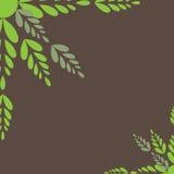 De Groene bladeren van de kleur. Vector illustratie Royalty-vrije Stock Foto